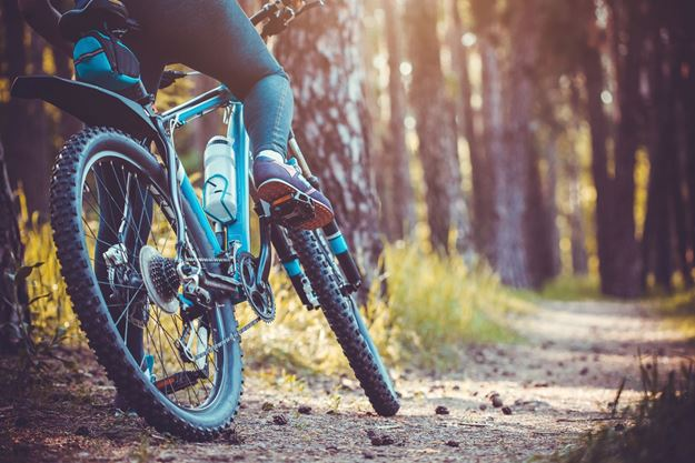 Picture of Day Ticket- Downhill Mountain Biking