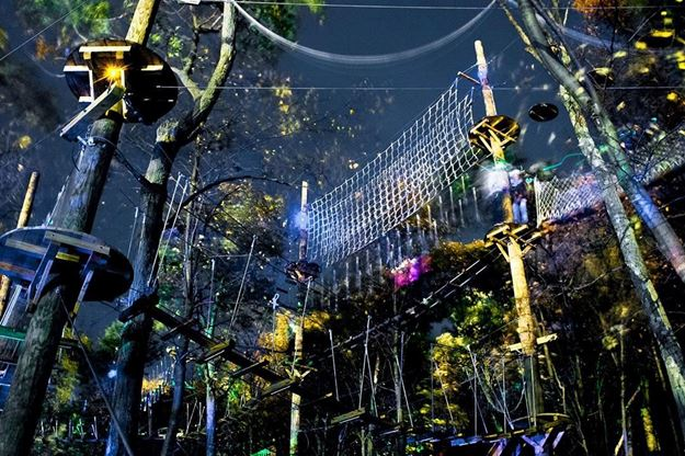 Picture of Night Time Zip & Climb