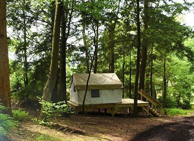 Picture of Hemlock Hideaway Glamping Site (Off Peak Sunday-Thursday)