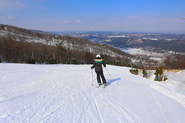 Picture of 3 Pack of Private Ski Lessons